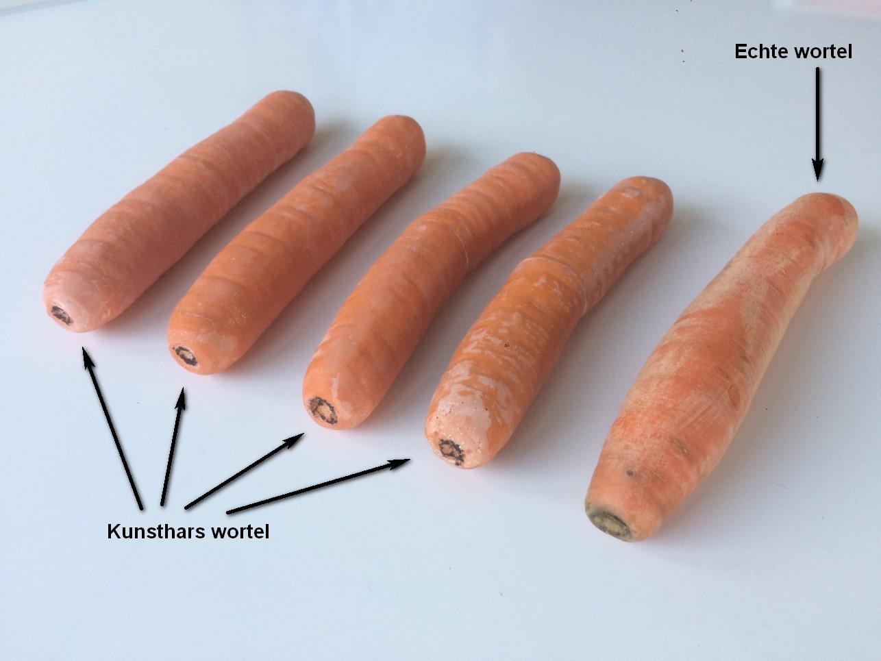 Kunsthars-gegoten-wortel-02